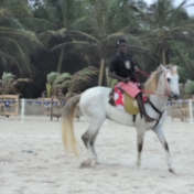 Ghana Accra Beach Horseback Riding